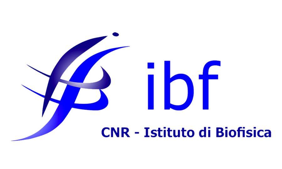 IBF CNR