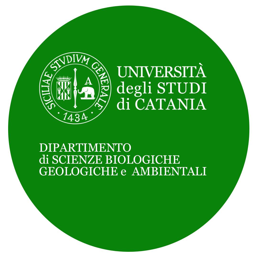 DSBGA - Unict