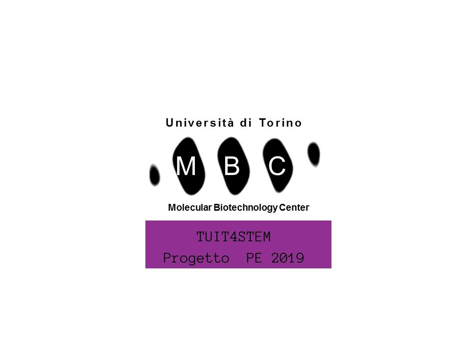 Centro Interdipartimentale di Ricerca per le Biotecnologie Molecolari - MBC