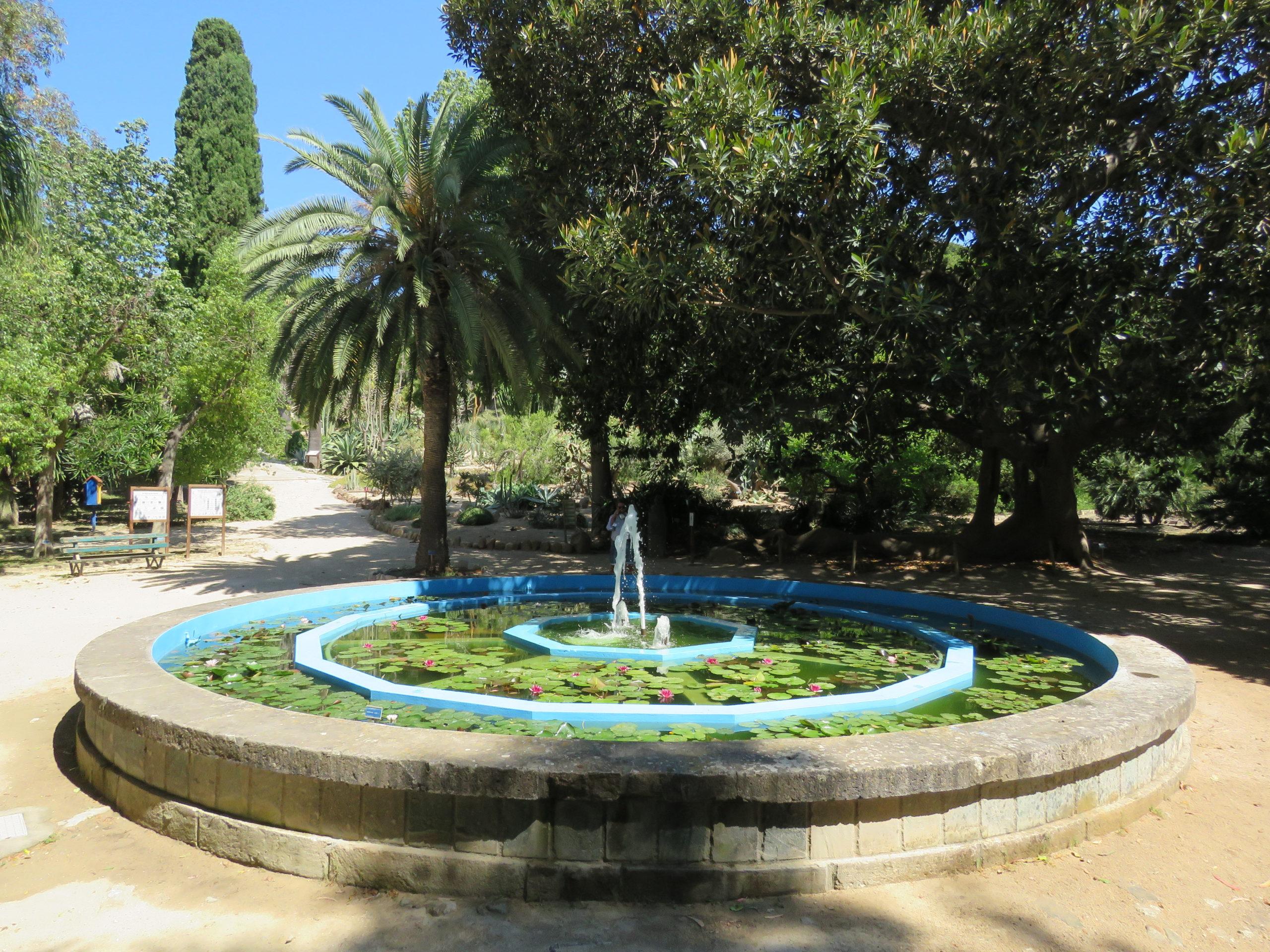 Orto Botanico di Cagliari HBK - Hortus Botanicus Karalitanus