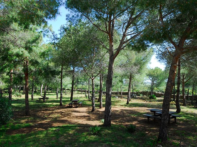 Parco Regionale di Porto Conte